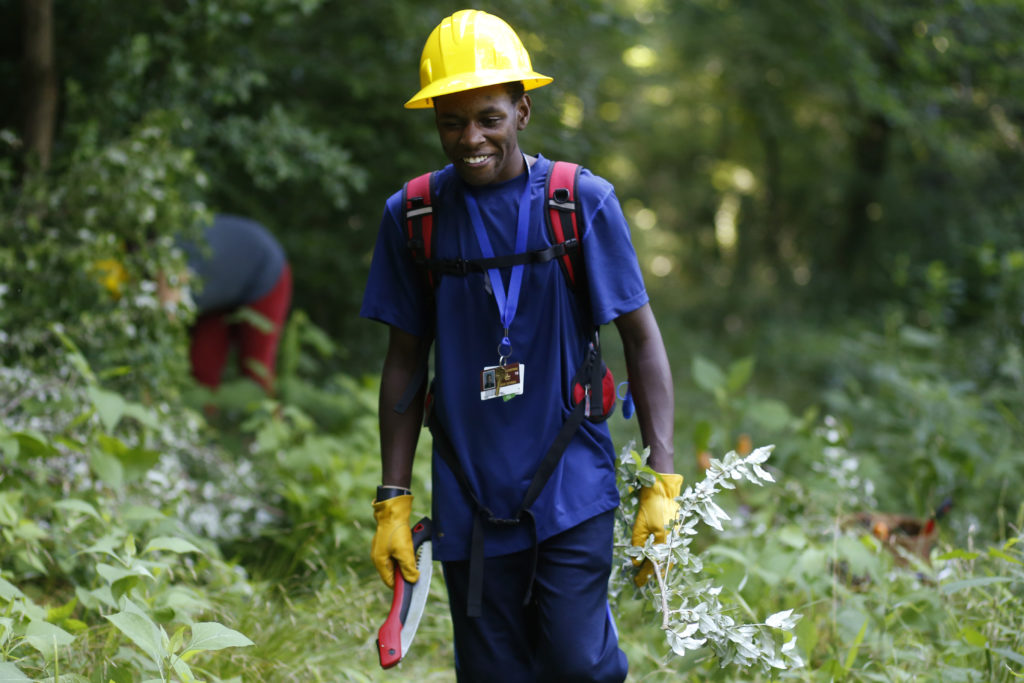 Dantwan Watkins, 17, who attends Clarke Central clears away elaeagnus plants during a Young Conservation Stewards workday in Athens, Ga., Thursday, June 7, 2018.  the Young Conservation Stewards will be spending this summer working to remove invasive plant species such as elaeagnus in the Athens area. [Joshua L. Jones/Athens Banner-Herald]