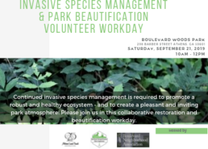 Invasive Species Removal & Management Workday @ Boulevard Woods Park