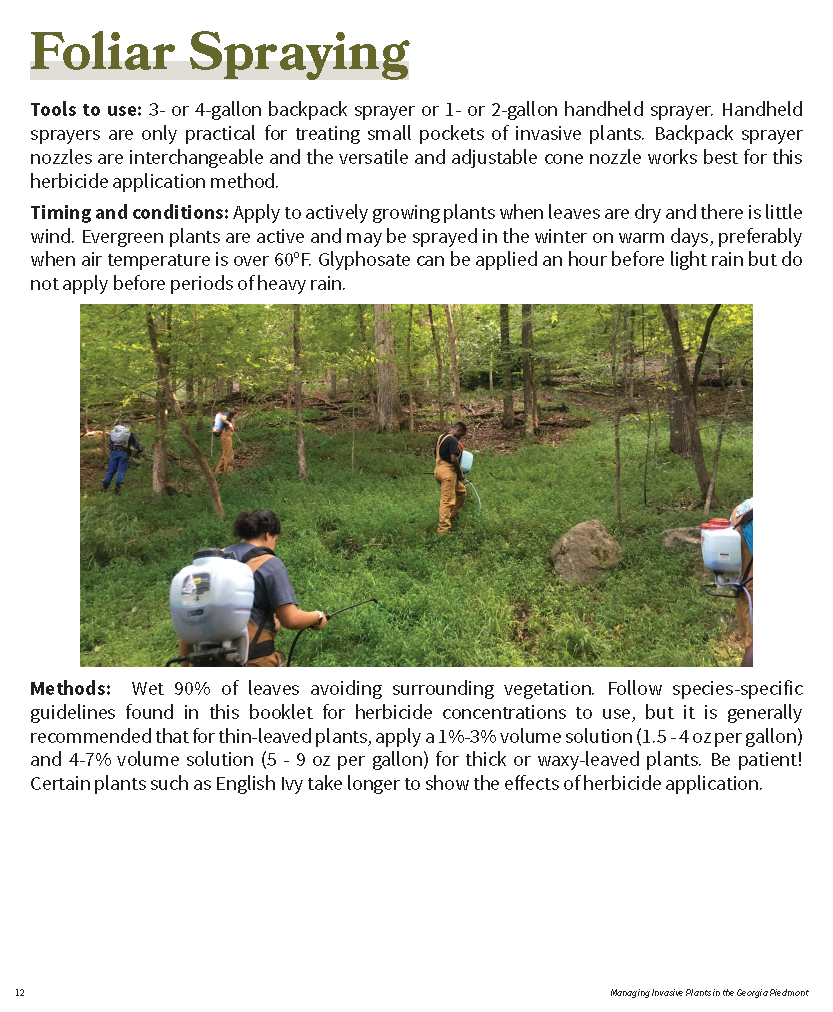 Managing Invasive Plants in the GA Piedmont for web_Page_11